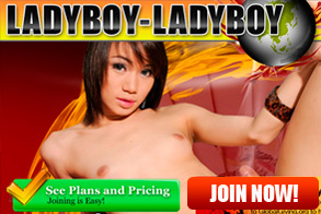 Beautiful Ladyboys